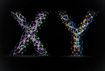 y chromosome male  According to the researchers,