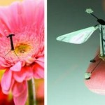 flying-drone-based-on-an-insect