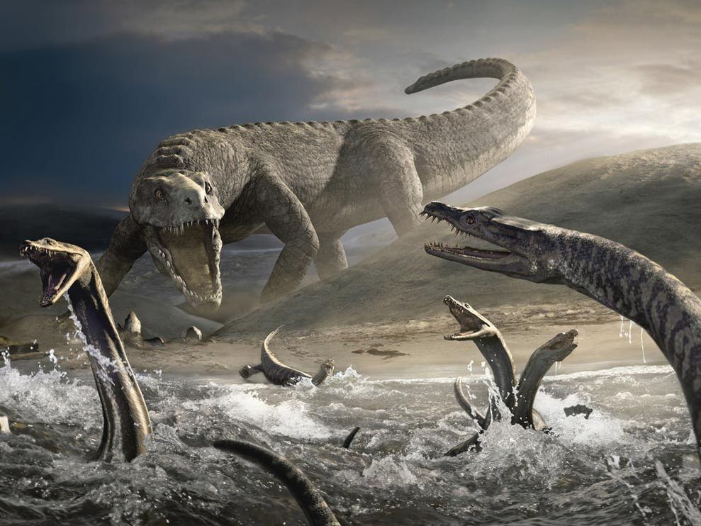 Scientists find first direct evidence of Nothosaurs' locomotion