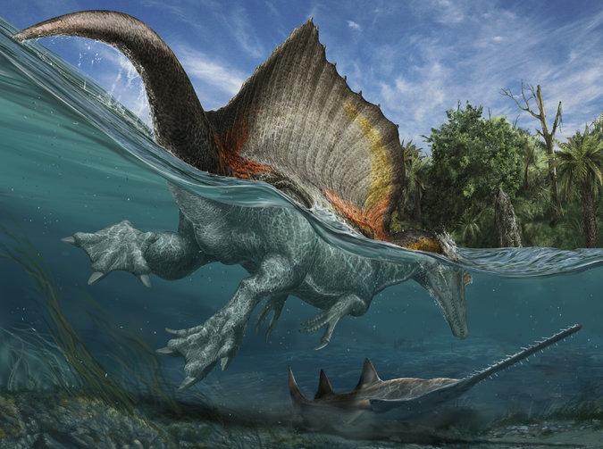 Largest Carnivorous Dinosaur
