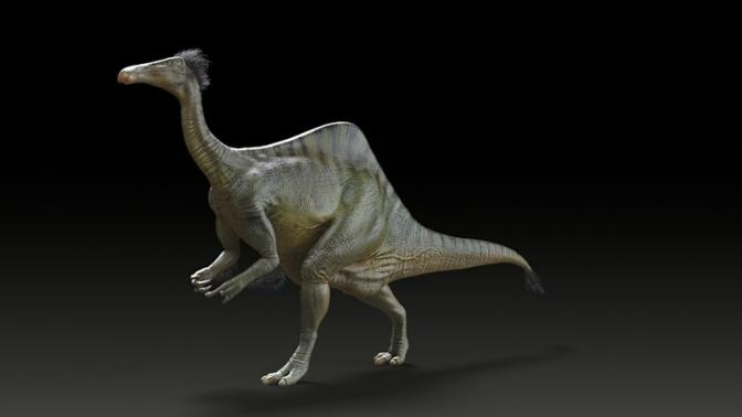 Mystery of Dinosaur with Horrible Hands Revealed