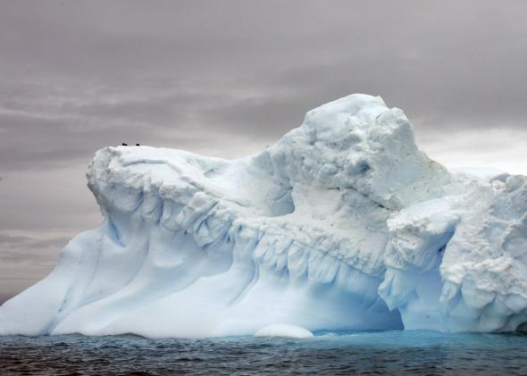 Antarctica Melting Rate