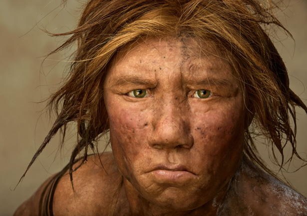 humans and neanderthals