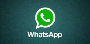 whatsapp web was launched
