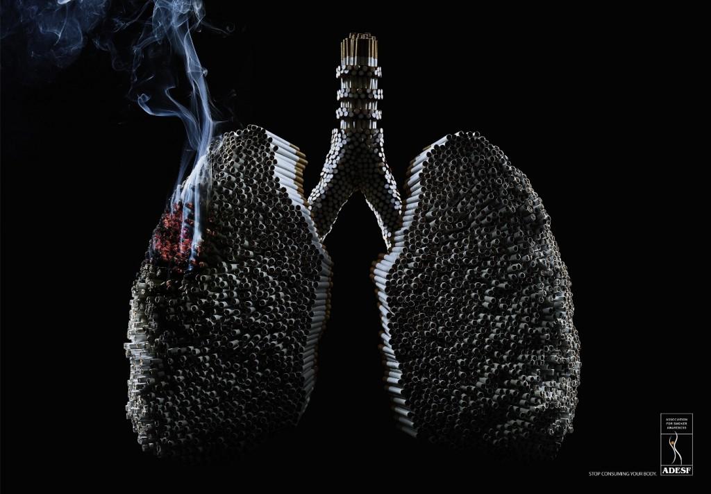 Smoking Death Toll