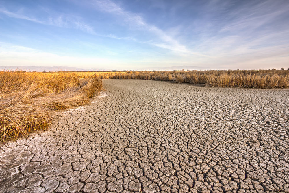 Global Warming Is a Key Contributor to California Drought, Study Says