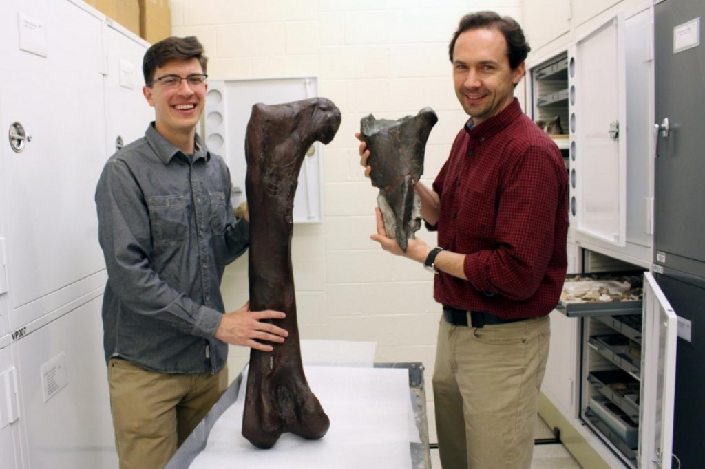"""alt=""""the two scientists display the dinosaur fossil"""""""
