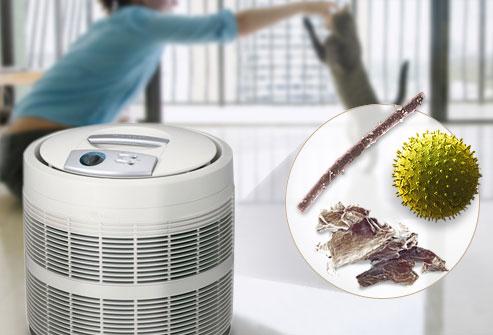 """alt=""""air purifier reducing microbes"""""""