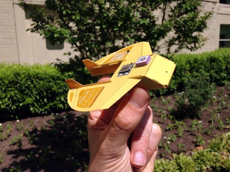 cicada drones