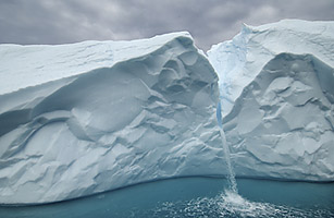 """""""Large Scale Fishing Ban in Arctic Waters"""""""