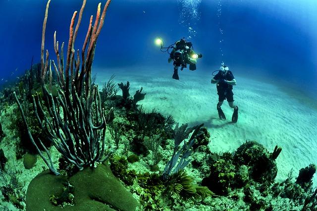 """deep-sea scuba diving"""