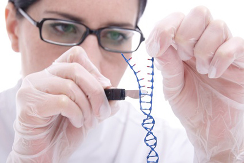 "alt=""Lab Researcher Mimics Genome Editing"""