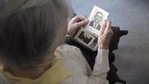 alt= memory loss Alzheimer's disease