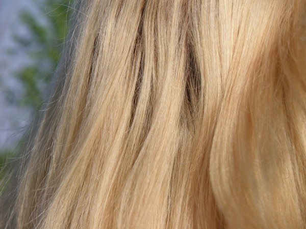A strand of hair more effective than DNA profiling