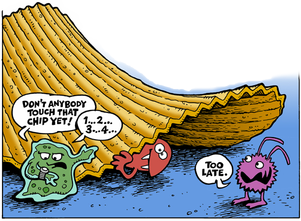 5 second rule is a myth