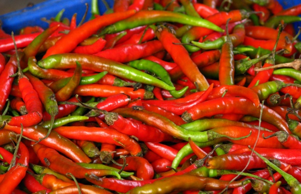 a pile of red chili peppers