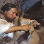 wax figure of Neanderthal man in museum
