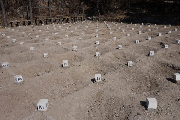 7000 bodies excavation site