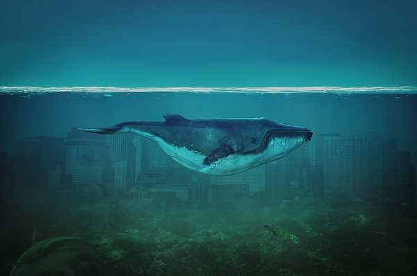 Blue whale swimming in an imaginary ocean