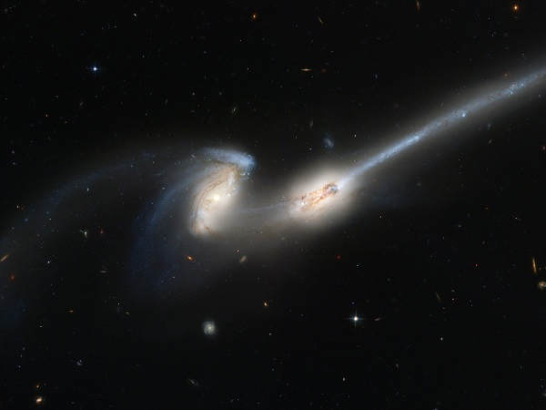Two spiral galaxies