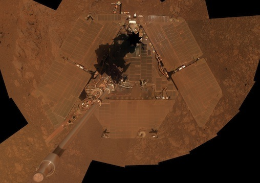 opportunity_selfie copy