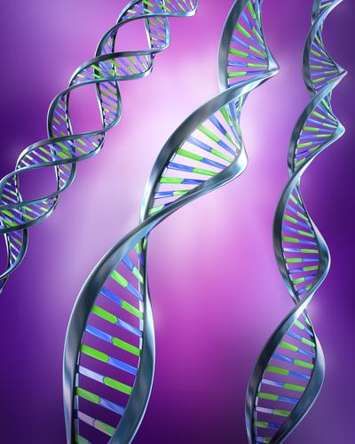 shutterstock_genes