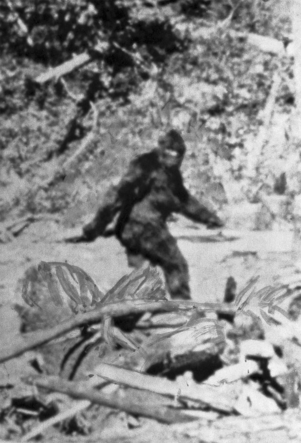 DNA Analysis Might Reveal The Enigma Behind Big Foot