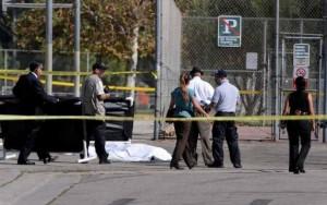 Los Angeles-Area Serial Killer