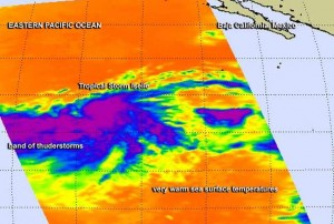 iselle downgrads to tropical storm