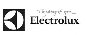 Electrolux Bought GE Appliance for $3.3 billion