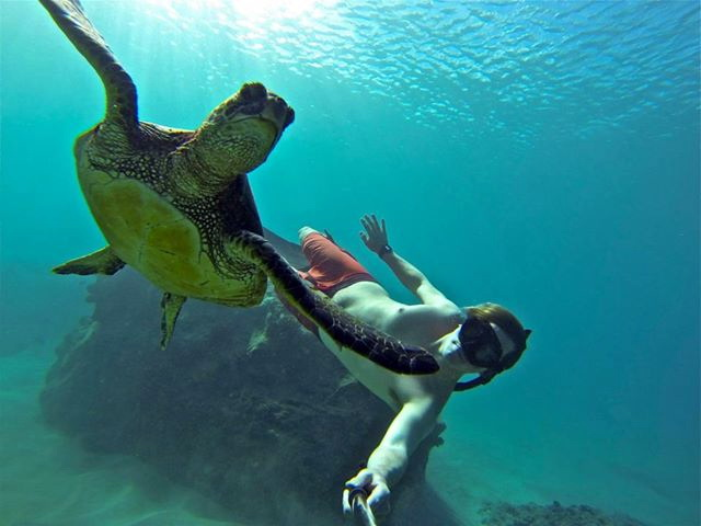 Can GoPro Cameras Make You The Vacation Hero While Looking After