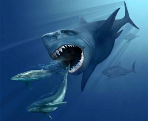 Giant Megalodon Shark Died 2.6 Million Years Ago