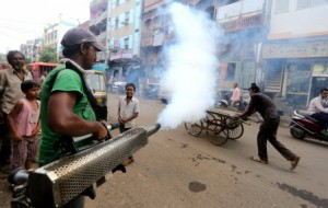 China Faces Worst Dengue Virus Outbreak in Two Decades