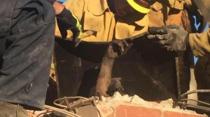 Authorities Arrest Californian Woman Saved from Chimney