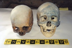 Skulls Discovered in Waste Transfer Station Near Books on Witchcraft and Satan