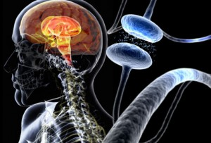 Breakthrough in Stem Cell Treatment Offers Hope to Parkinson's Patients