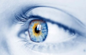 New Material Could Help Build an Artificial Retina