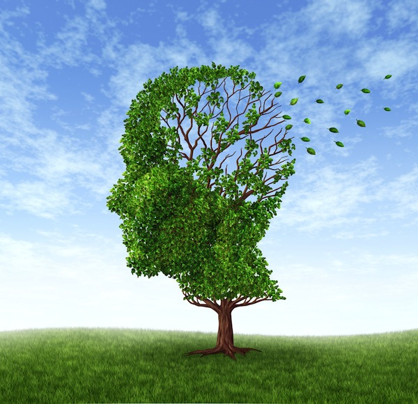 memory-issues-are-linked-to-strokes-among-highly-educated