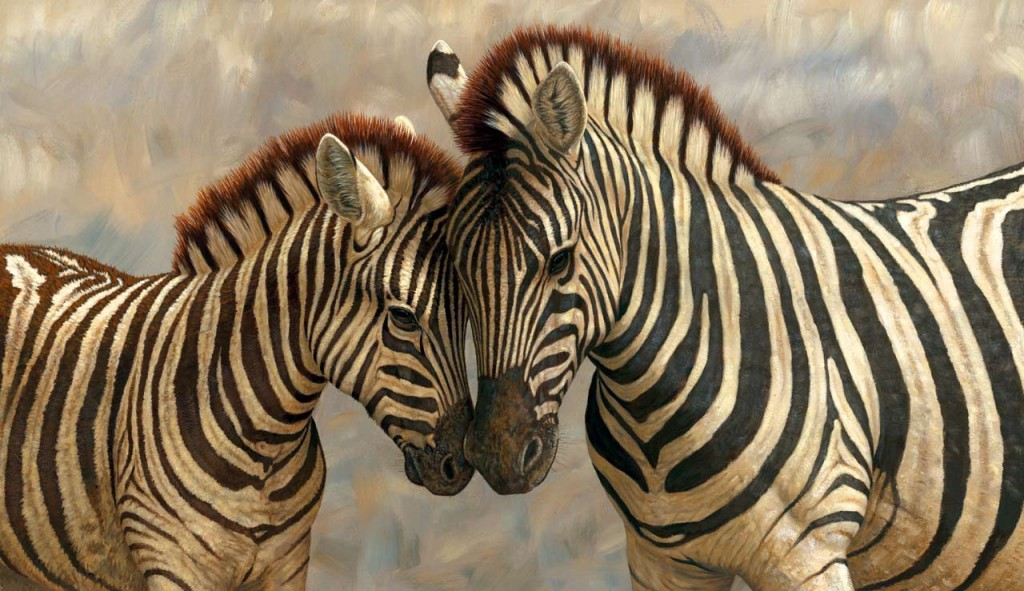Adaptive Significance of Zebra Stripes 2
