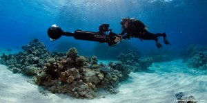First Look at Google's Barrier Reef Street Map