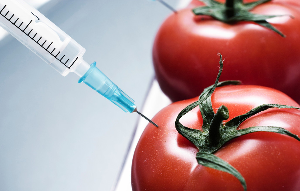 """alt=""""injection of some substance into fresh red tomatoes"""""""