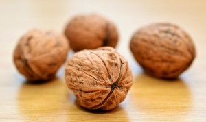 Walnuts And a Healthy Diet Could Prevent Physical Impairment