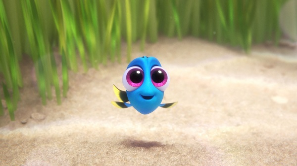 baby Dory from Finding Dory