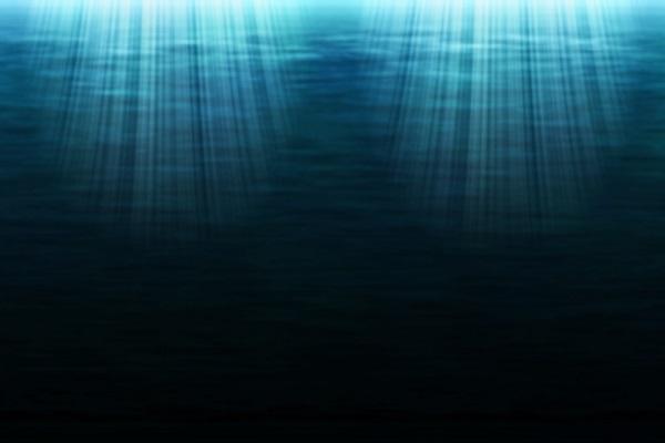 strange creatures waters