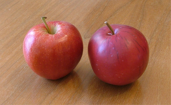 fake images of apples