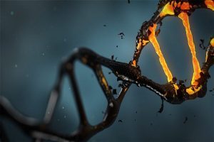 Scientists Safely Use CRISPR To Remove A Genetic Condition