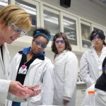 Do Female Scientists Get the Recognition They Deserve?