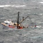 U.S. Seafood Dealer Lied About Fish Being Caught in U.S.